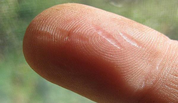 Photo of Długi palec