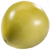 Photo of Pomelo