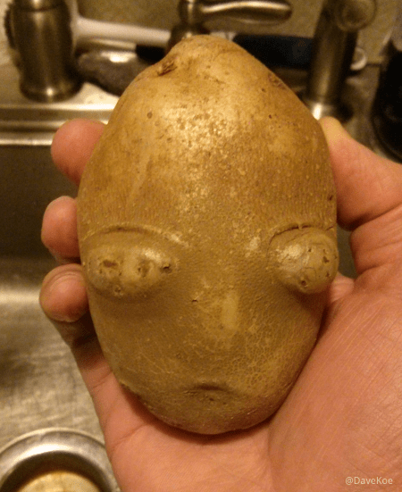 Photo of Paradoks marsjańskiego kartofla