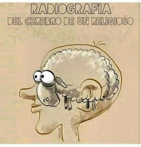 brain-sheep
