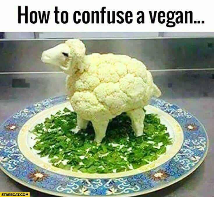 confuse-vegan