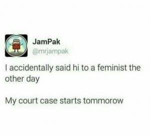 hi-feminist