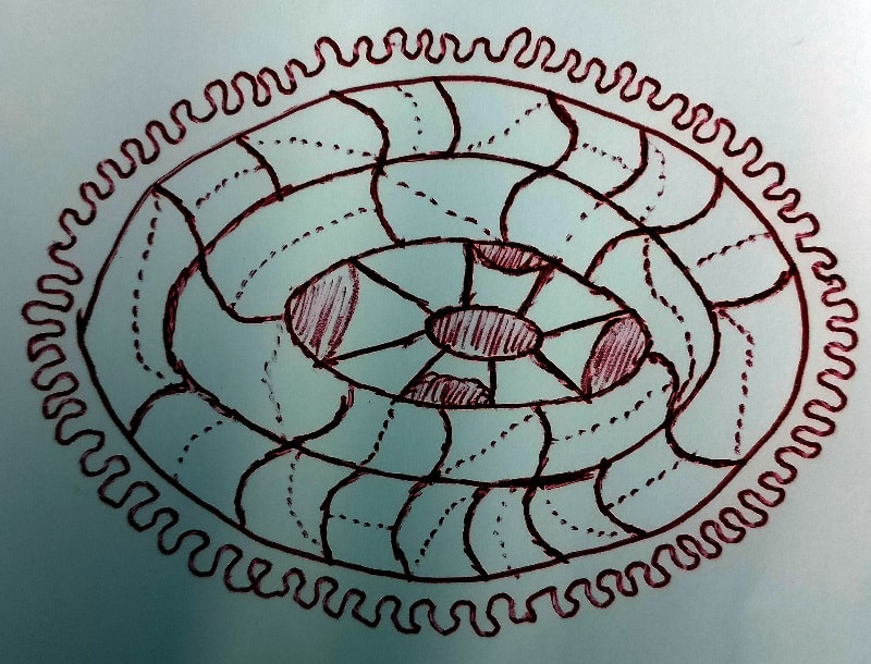 Komórkoryjec krągłoprzędny (Cellufaciam Circatextili)