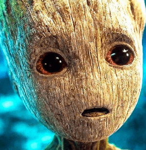 Photo of I am Groot